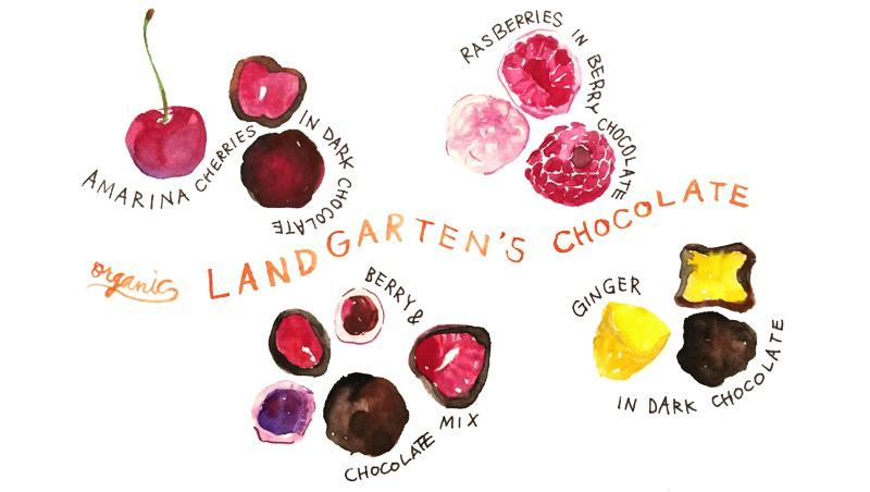 landgarten_illust_flavor